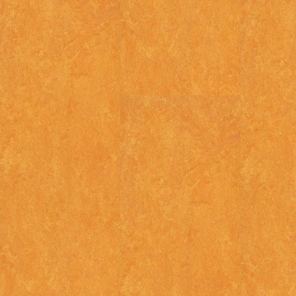 Ostali podovi DECOR 6628 | Floor Experts